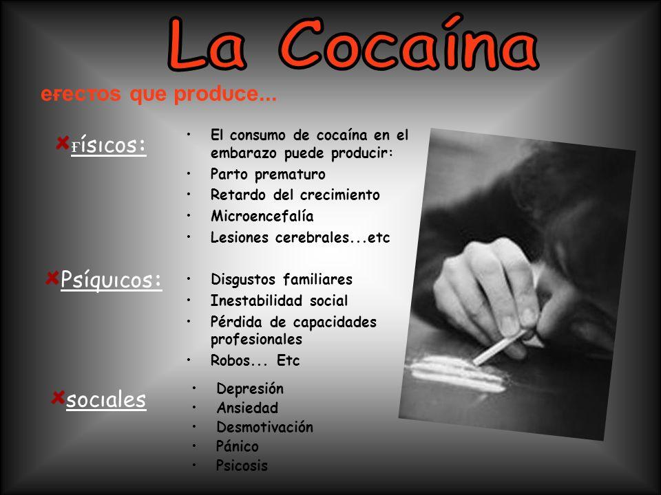 La Cocaína eғecтoѕ qυe prodυce... ғíѕιcoѕ: Pѕíqυιcoѕ: ѕocιaleѕ