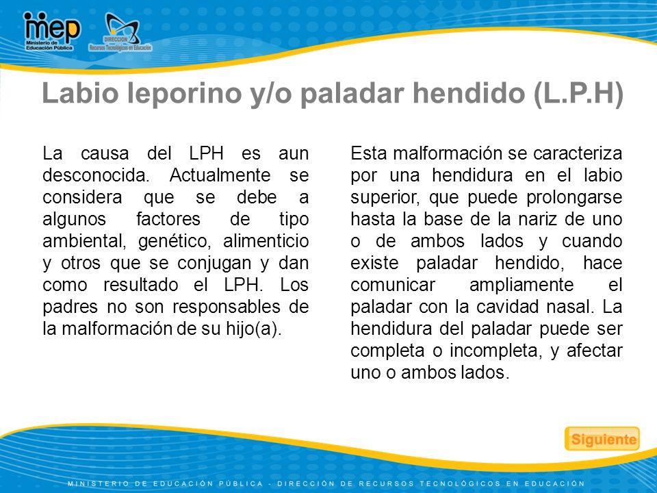 Labio leporino y/o paladar hendido (L.P.H)