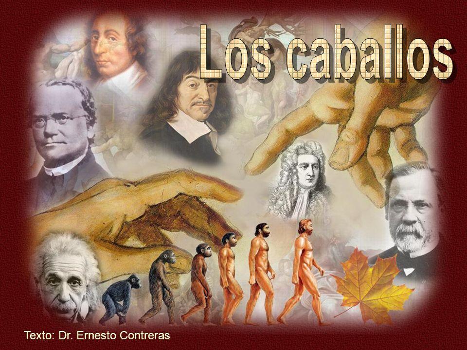 Los caballos Texto: Dr. Ernesto Contreras
