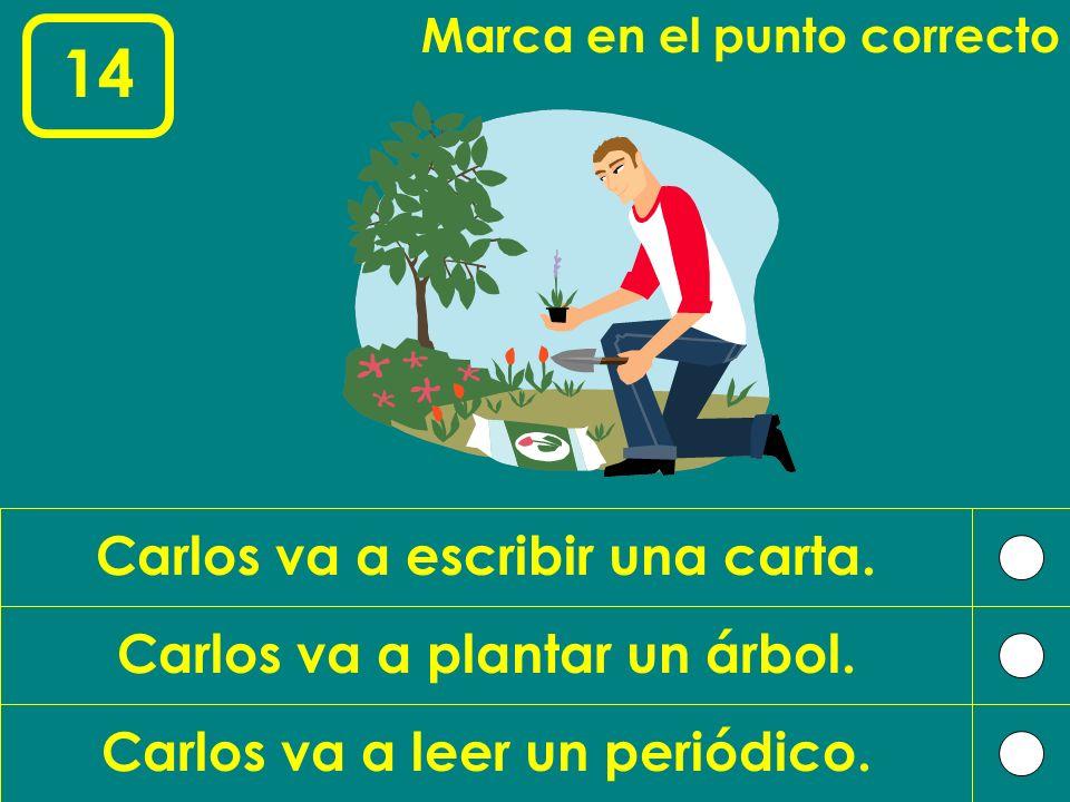 14 Carlos va a escribir una carta. Carlos va a plantar un árbol.