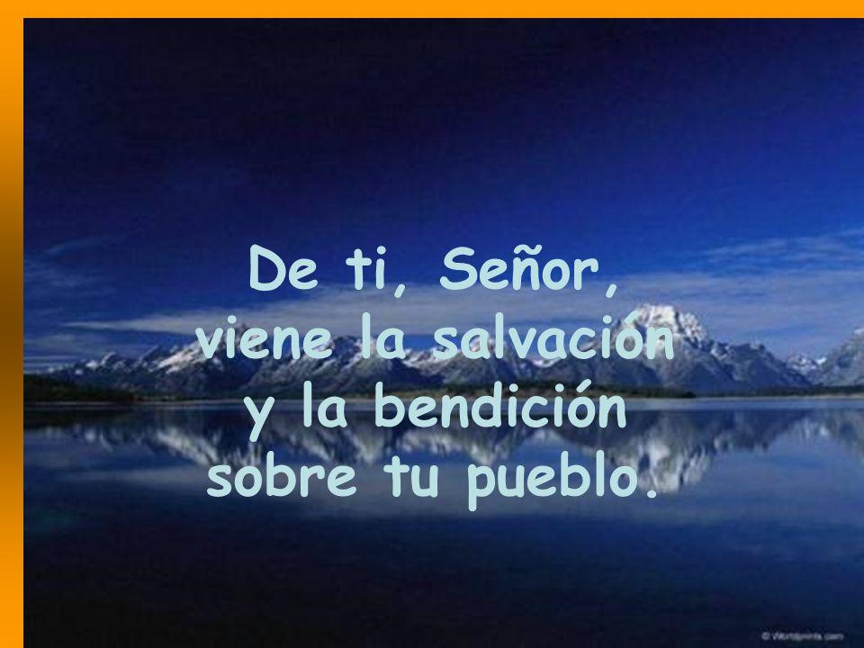 De ti, Señor, viene la salvación y la bendición sobre tu pueblo.