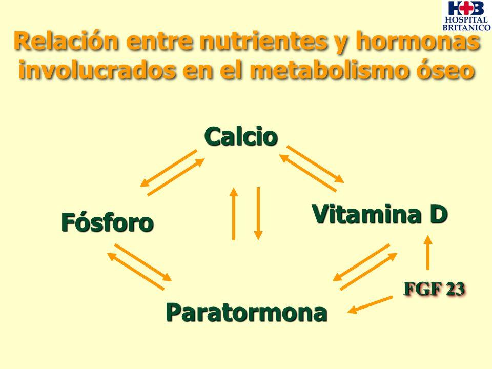 Relación entre nutrientes y hormonas involucrados en el metabolismo óseo