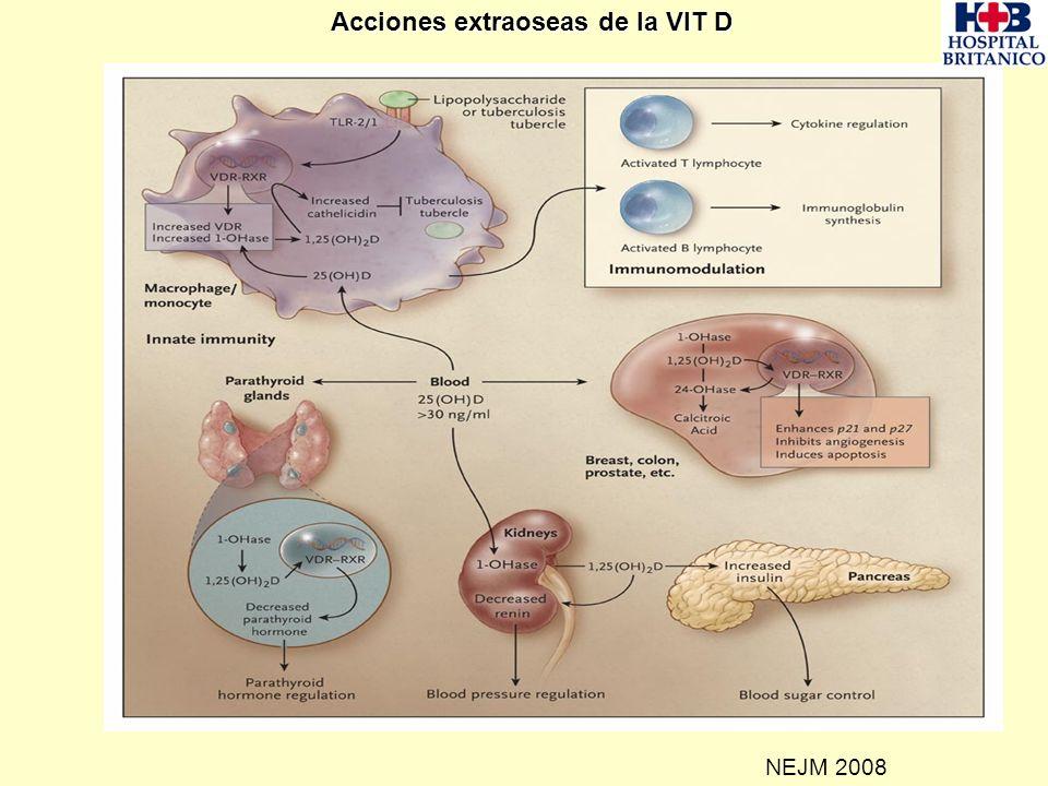 Acciones extraoseas de la VIT D