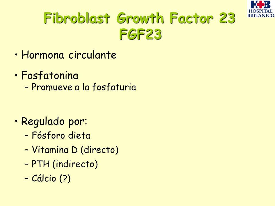 Fibroblast Growth Factor 23 FGF23