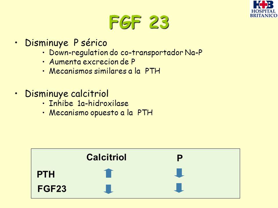 FGF 23 Disminuye P sérico Disminuye calcitriol Calcitriol P PTH FGF23
