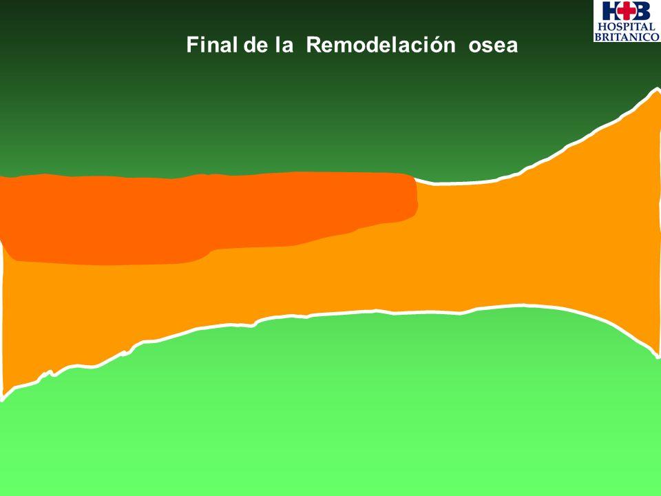 Final de la Remodelación osea