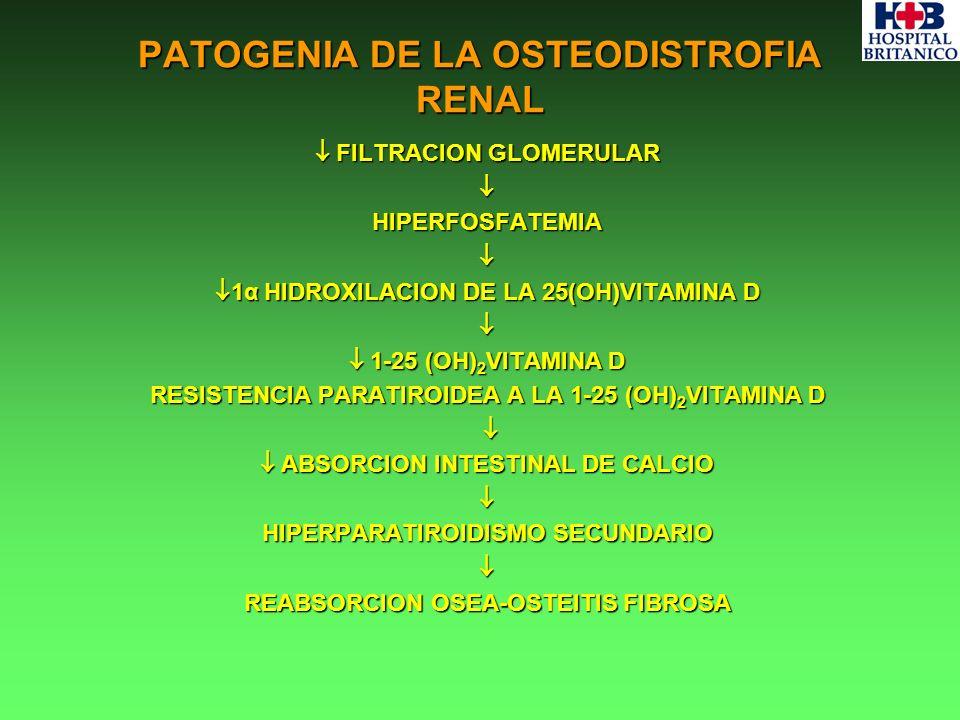 PATOGENIA DE LA OSTEODISTROFIA RENAL