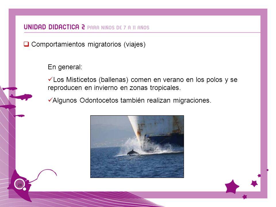 Comportamientos migratorios (viajes)