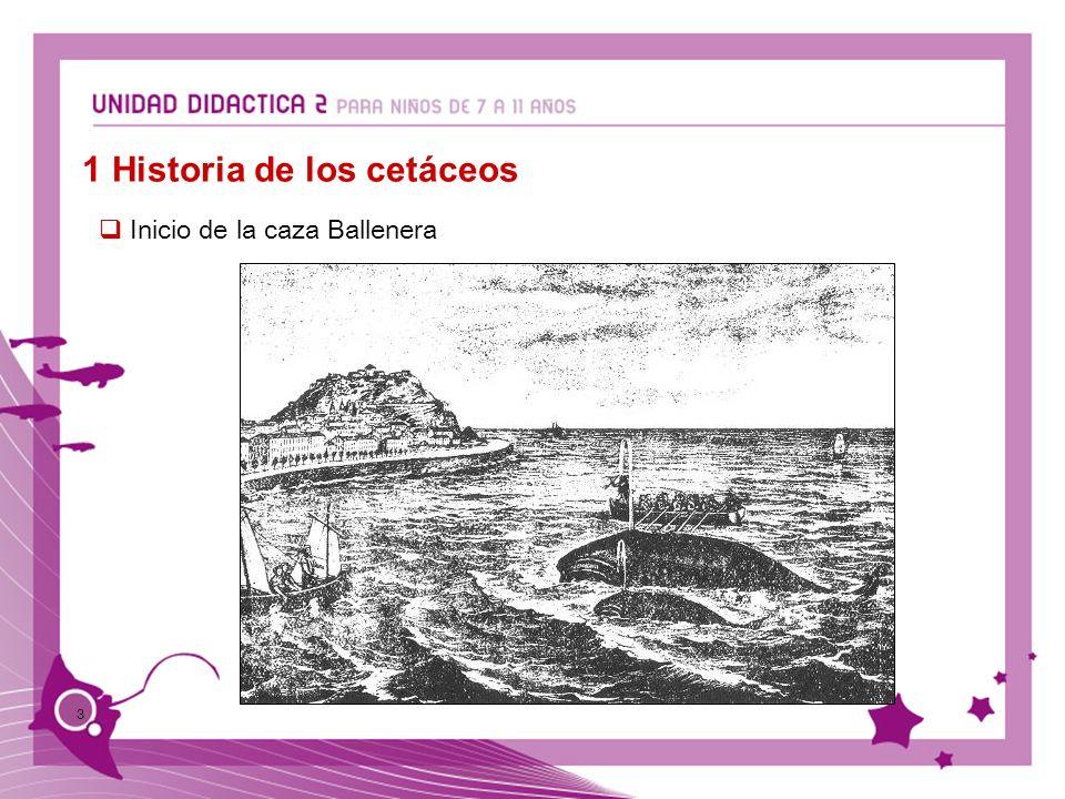 1 Historia de los cetáceos