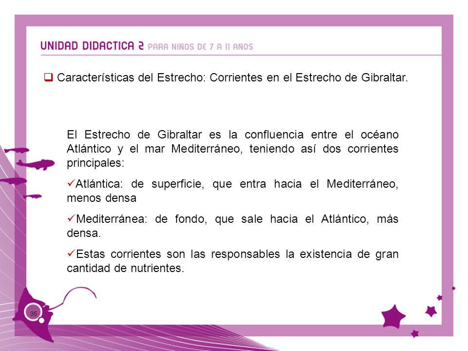 Características del Estrecho: Corrientes en el Estrecho de Gibraltar.