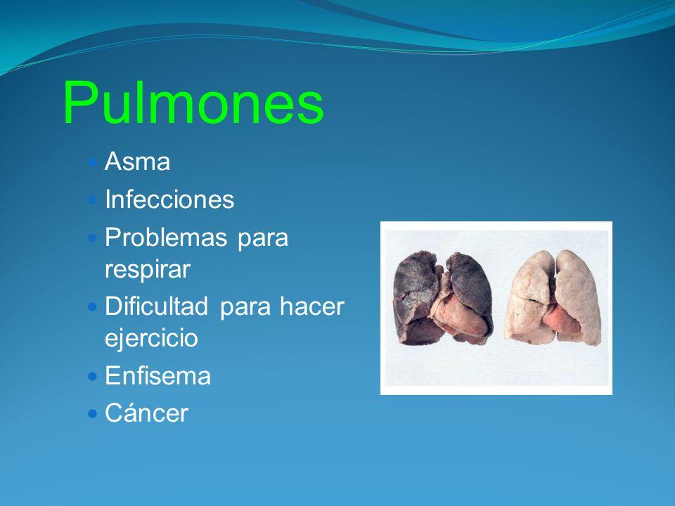 Pulmones Asma Infecciones Problemas para respirar