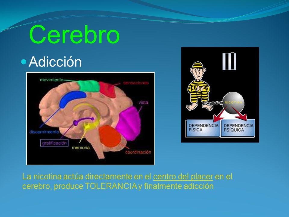 Cerebro Adicción.