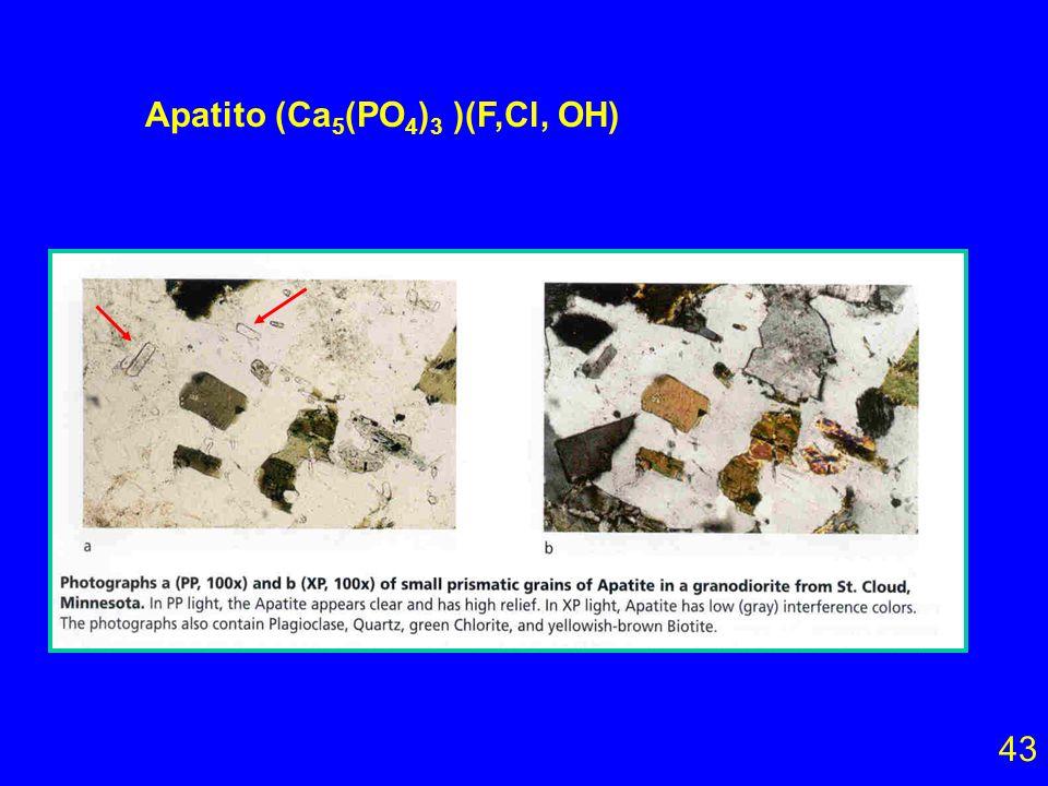 Apatito (Ca5(PO4)3 )(F,Cl, OH)