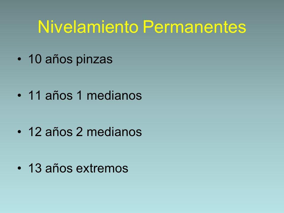 Nivelamiento Permanentes