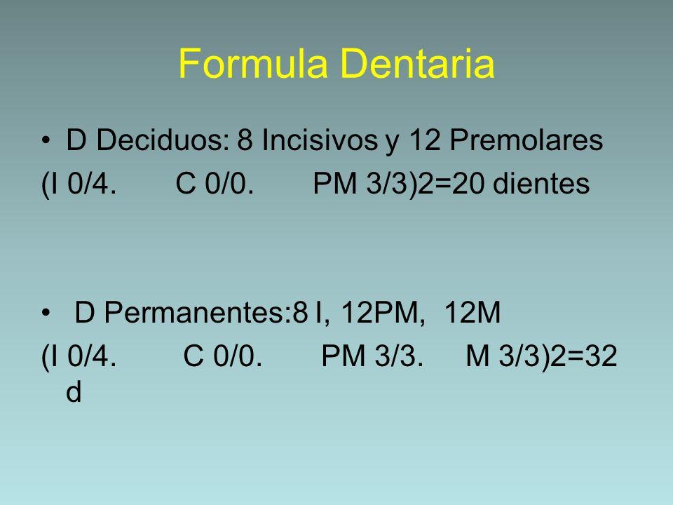Formula Dentaria D Deciduos: 8 Incisivos y 12 Premolares