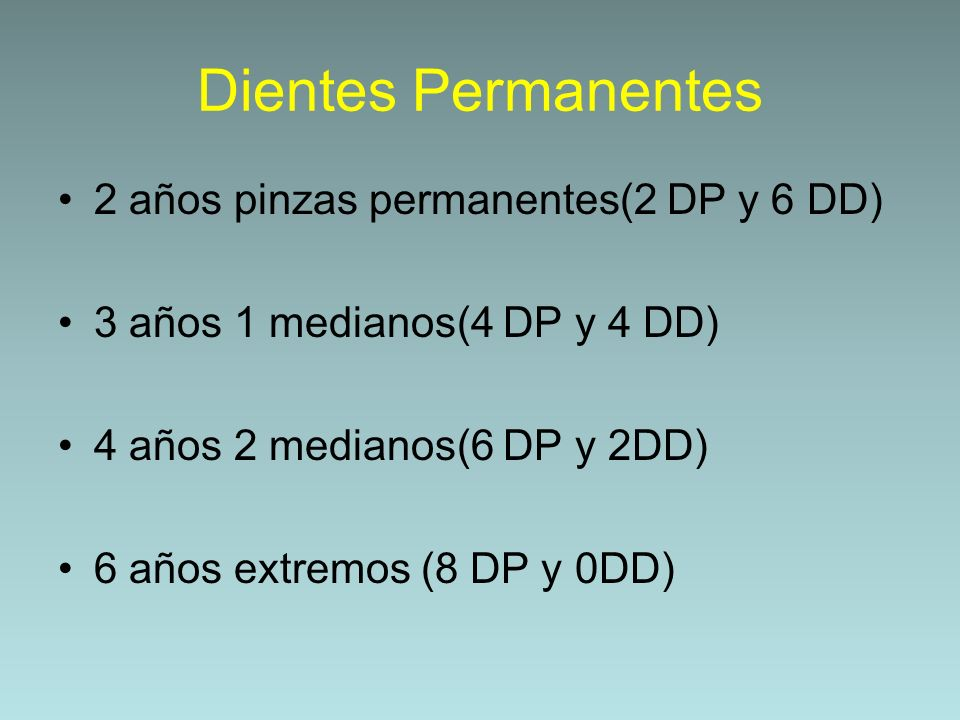 Dientes Permanentes 2 años pinzas permanentes(2 DP y 6 DD)