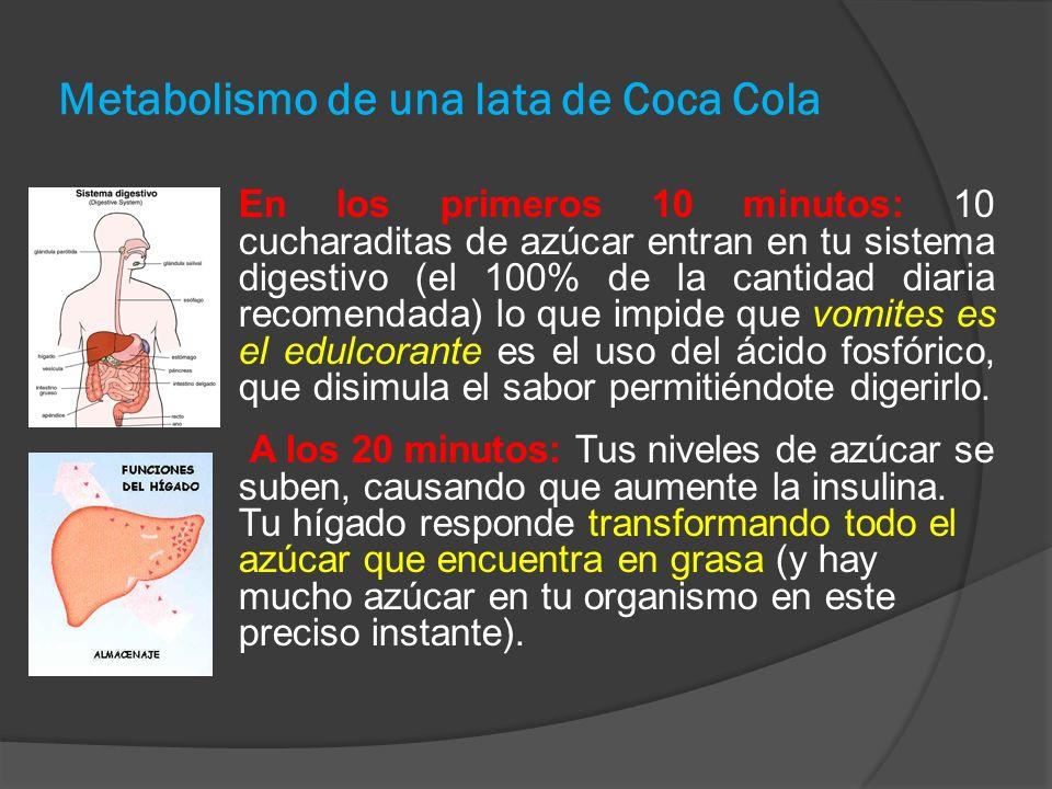 Metabolismo de una lata de Coca Cola