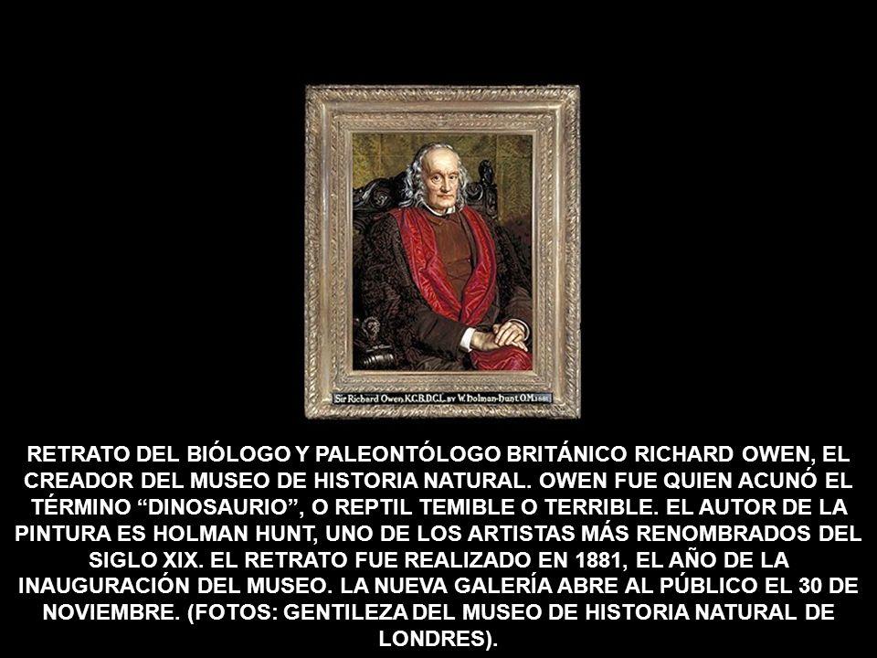 RETRATO DEL BIÓLOGO Y PALEONTÓLOGO BRITÁNICO RICHARD OWEN, EL CREADOR DEL MUSEO DE HISTORIA NATURAL.