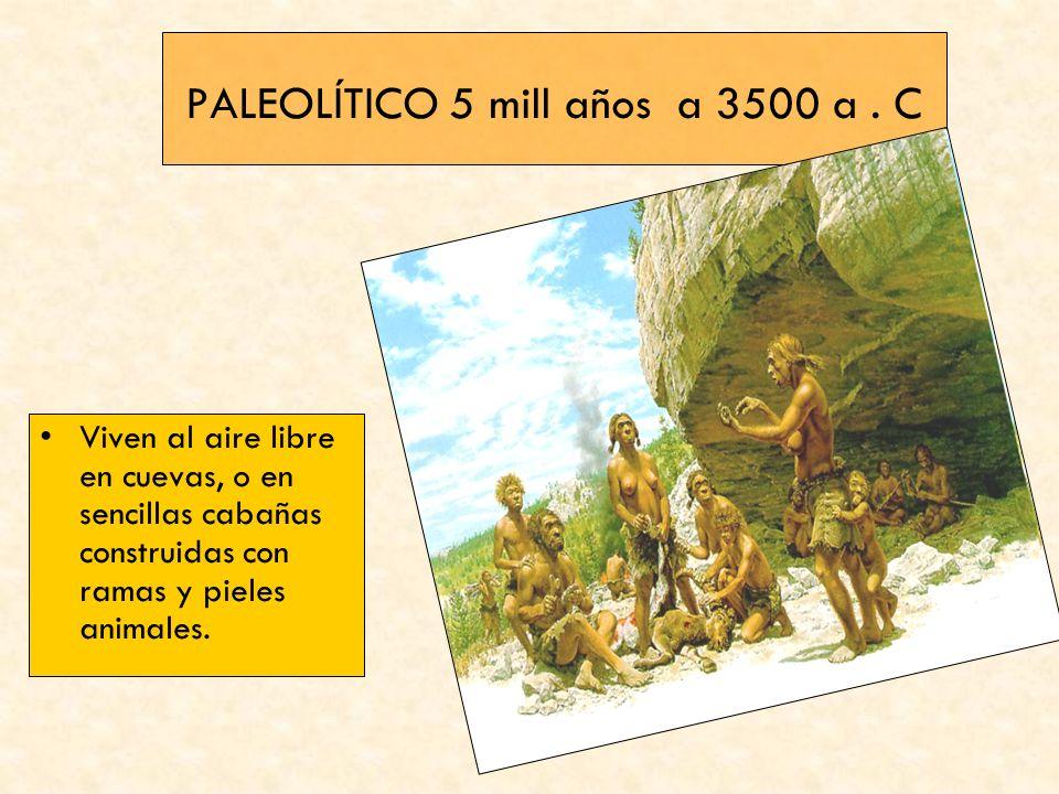 PALEOLÍTICO 5 mill años a 3500 a . C