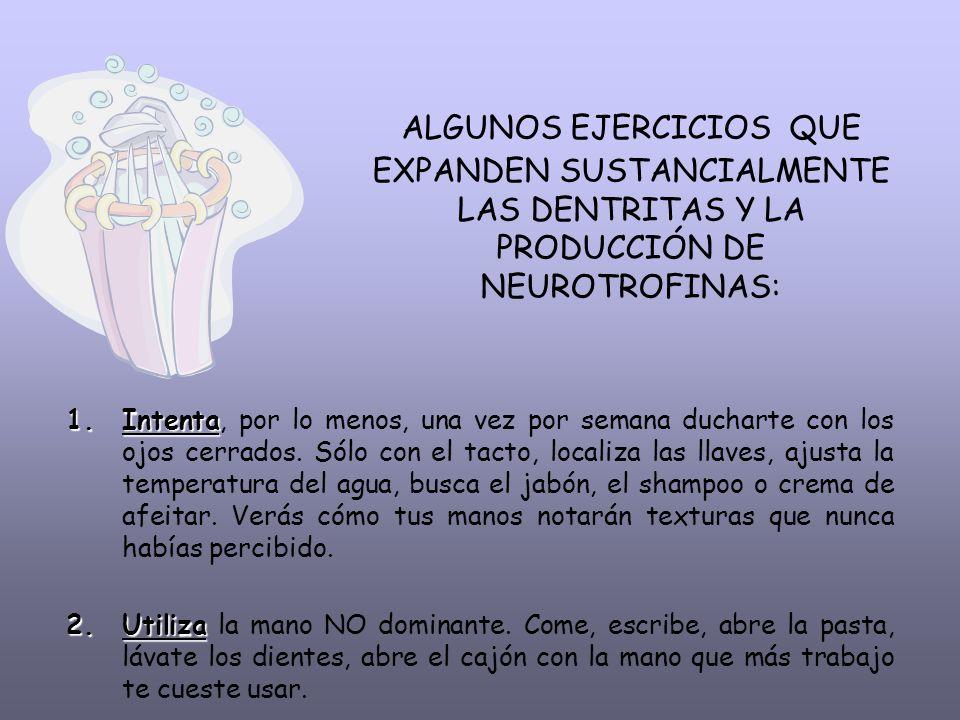 ALGUNOS EJERCICIOS QUE EXPANDEN SUSTANCIALMENTE LAS DENTRITAS Y LA PRODUCCIÓN DE NEUROTROFINAS: