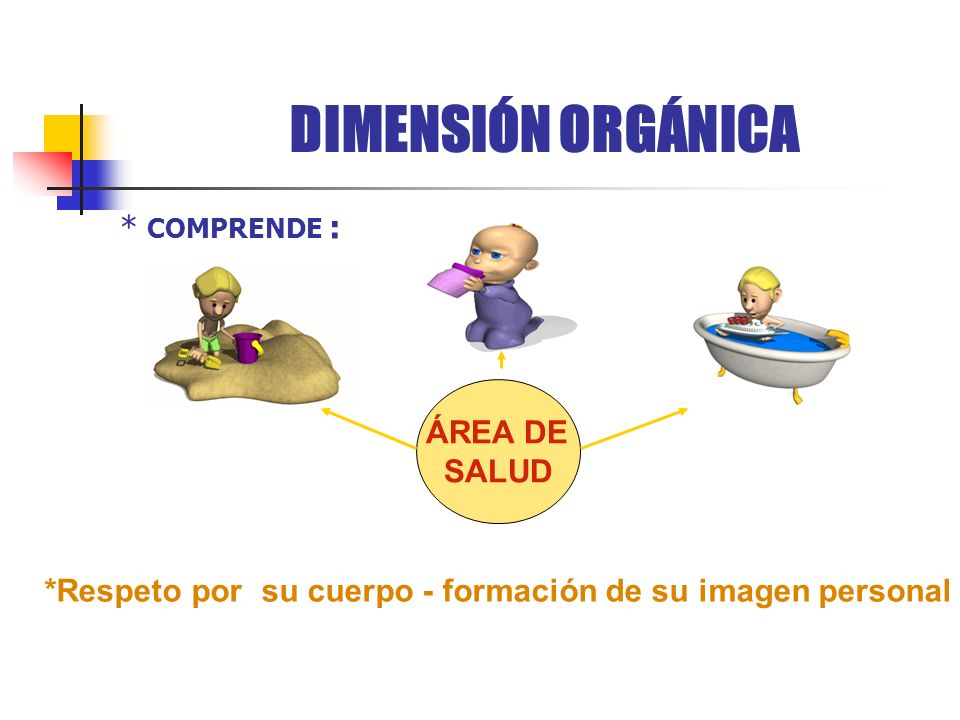 DIMENSIÓN ORGÁNICA * COMPRENDE : ÁREA DE SALUD
