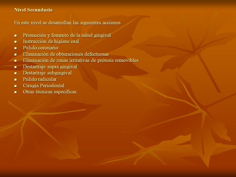 Nivel Secundario En este nivel se desarrollan las siguientes acciones. Promoción y fomento de la salud gingival.