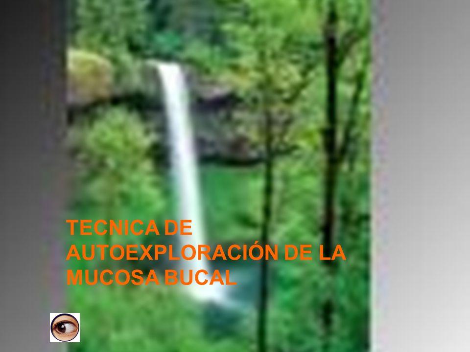 TECNICA DE AUTOEXPLORACIÓN DE LA MUCOSA BUCAL