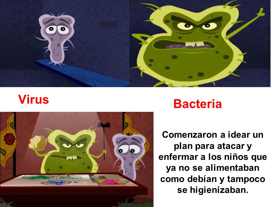 Virus Bacteria.