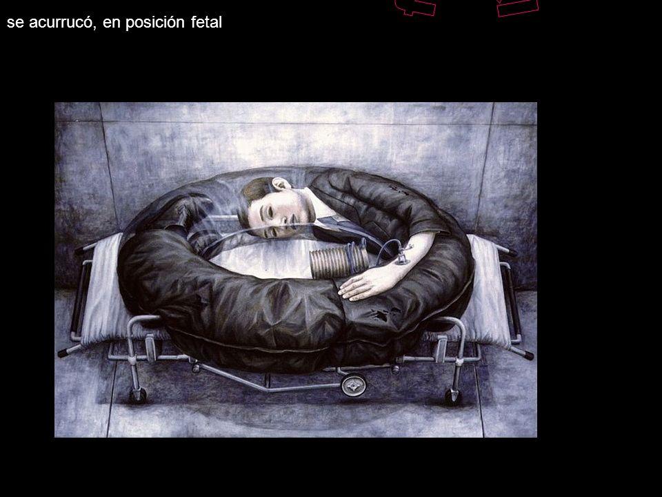 fetal se acurrucó, en posición fetal