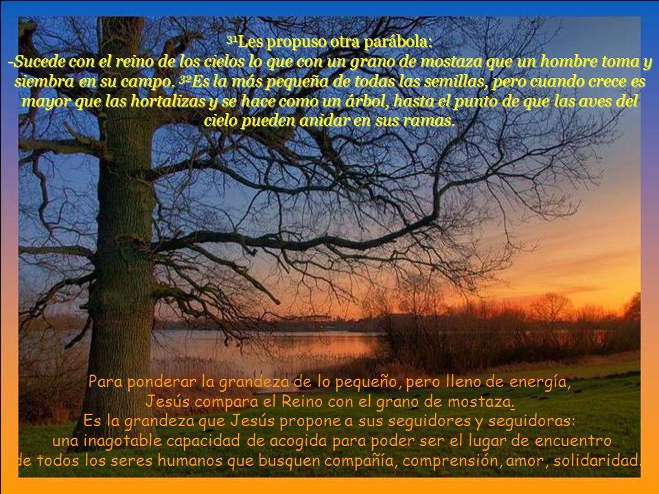 31Les propuso otra parábola: -Sucede con el reino de los cielos lo que con un grano de mostaza que un hombre toma y siembra en su campo. 32Es la más pequeña de todas las semillas, pero cuando crece es mayor que las hortalizas y se hace como un árbol, hasta el punto de que las aves del cielo pueden anidar en sus ramas.