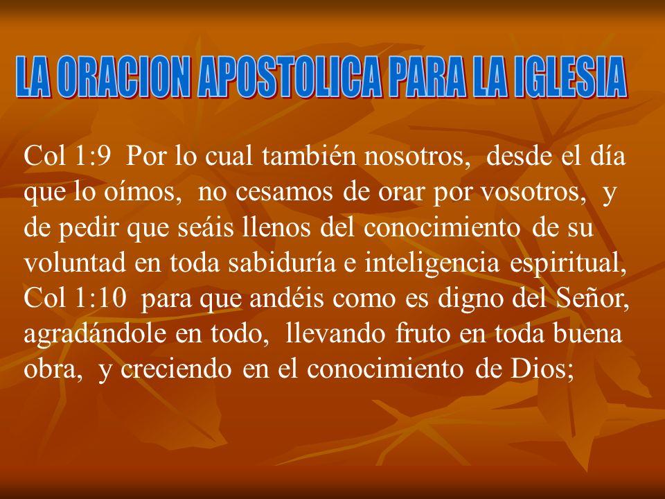 LA ORACION APOSTOLICA PARA LA IGLESIA
