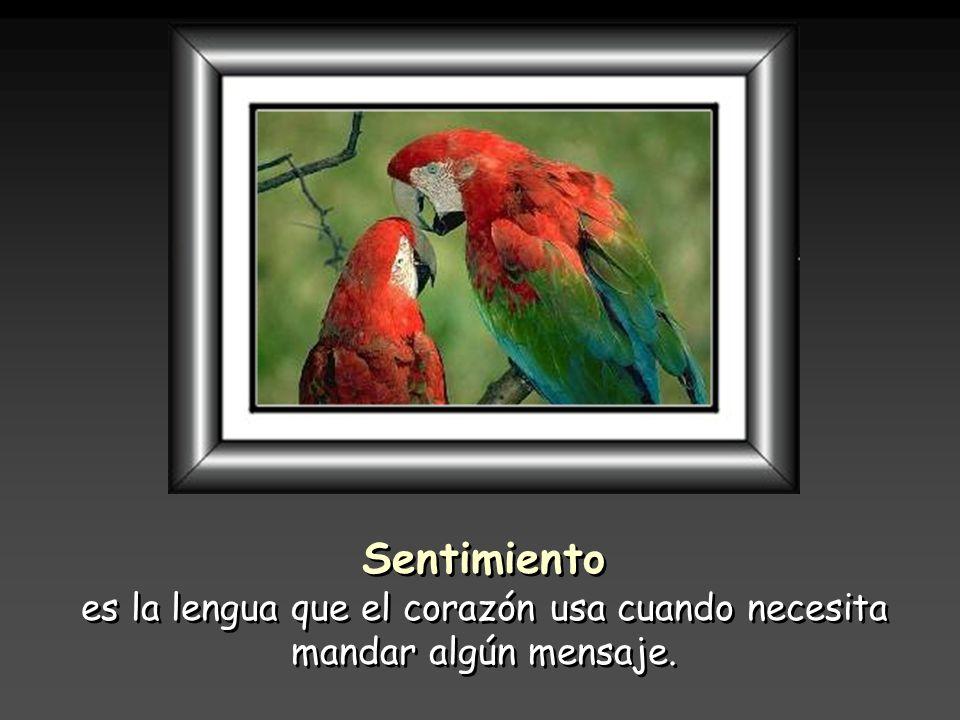 es la lengua que el corazón usa cuando necesita mandar algún mensaje.