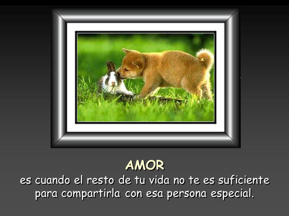 AMOR es cuando el resto de tu vida no te es suficiente para compartirla con esa persona especial.