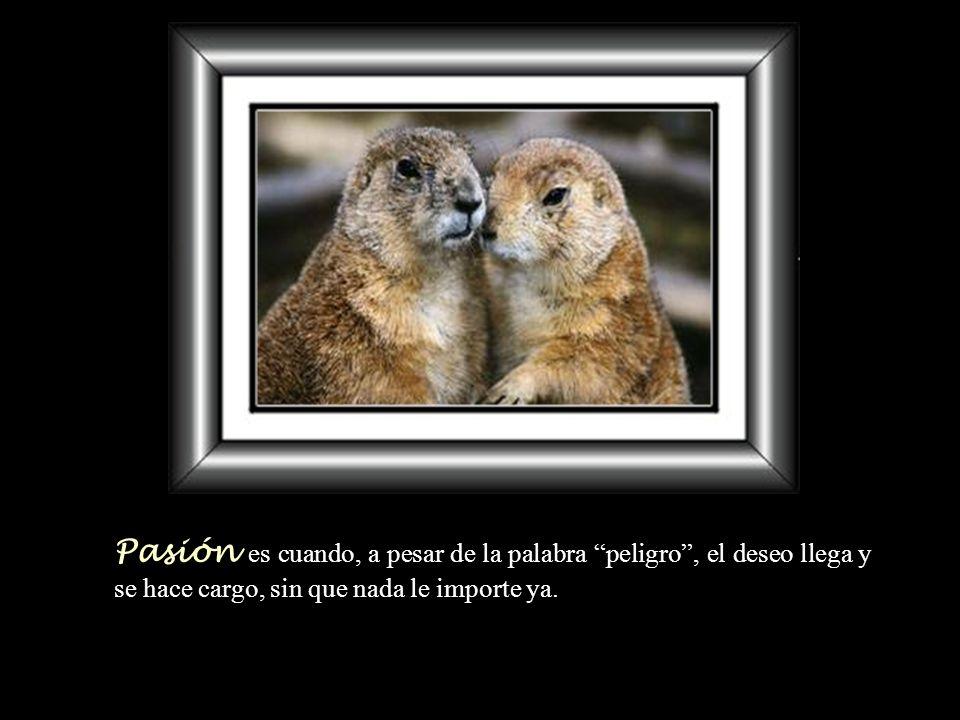 Pasión es cuando, a pesar de la palabra peligro , el deseo llega y se hace cargo, sin que nada le importe ya.