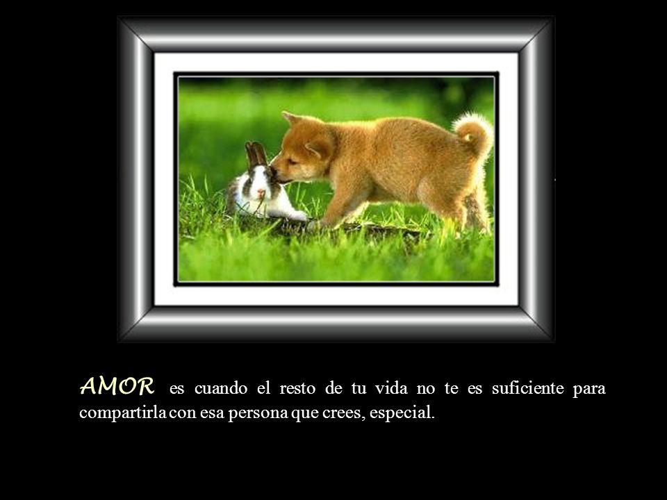AMOR es cuando el resto de tu vida no te es suficiente para compartirla con esa persona que crees, especial.