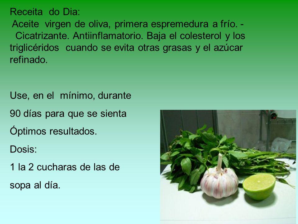 Receita do Dia: Aceite virgen de oliva, primera espremedura a frío