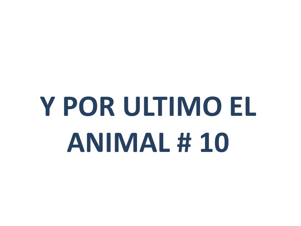 Y POR ULTIMO EL ANIMAL # 10