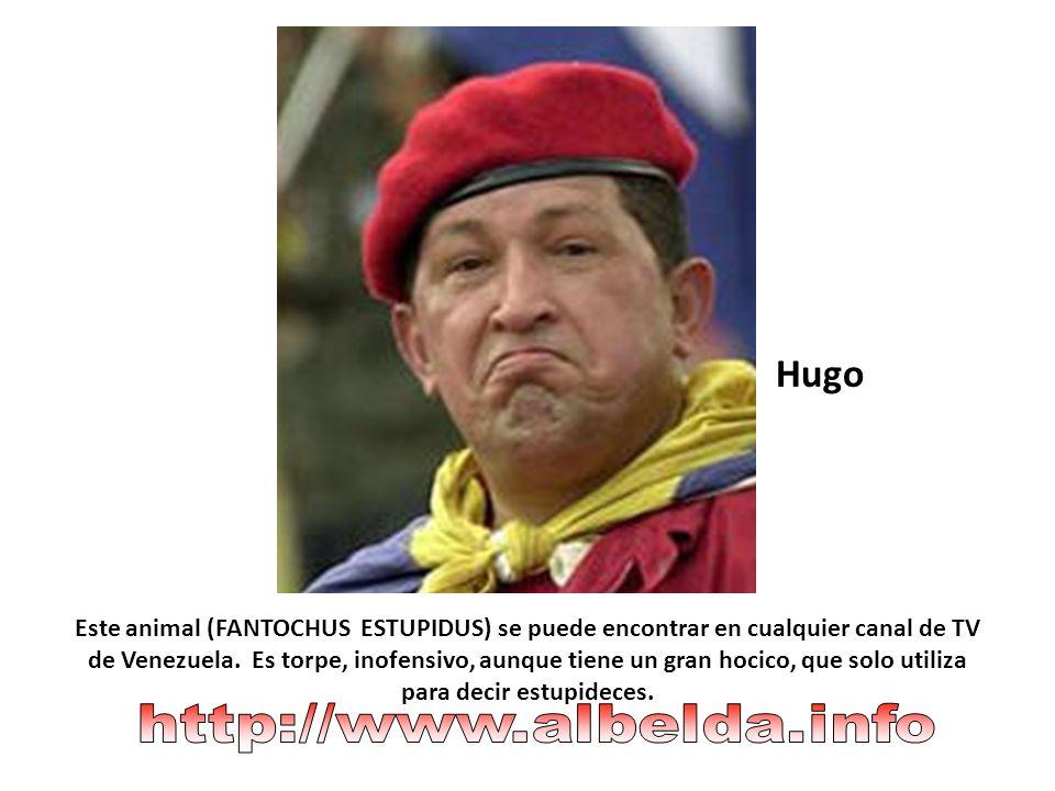 Hugo http://www.albelda.info
