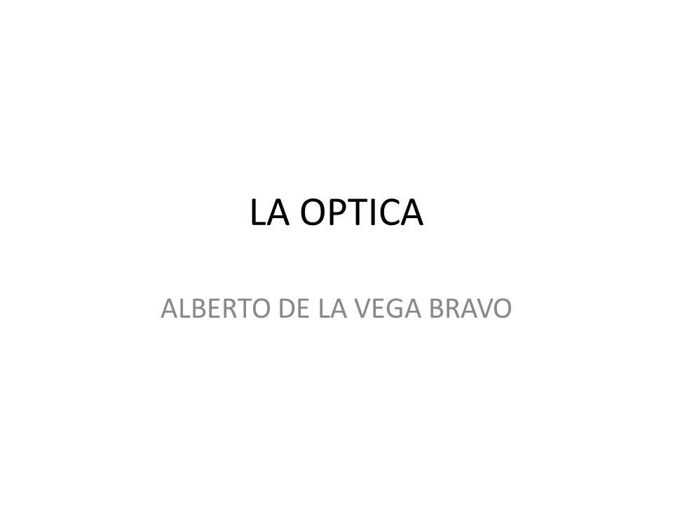 ALBERTO DE LA VEGA BRAVO