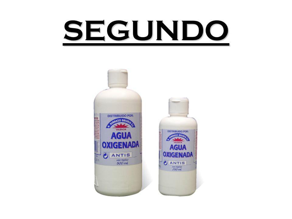SEGUNDO