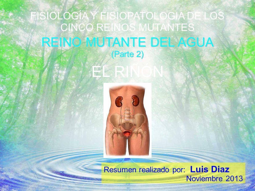 FISIOLOGÍA Y FISIOPATOLOGIA DE LOS CINCO REINOS MUTANTES