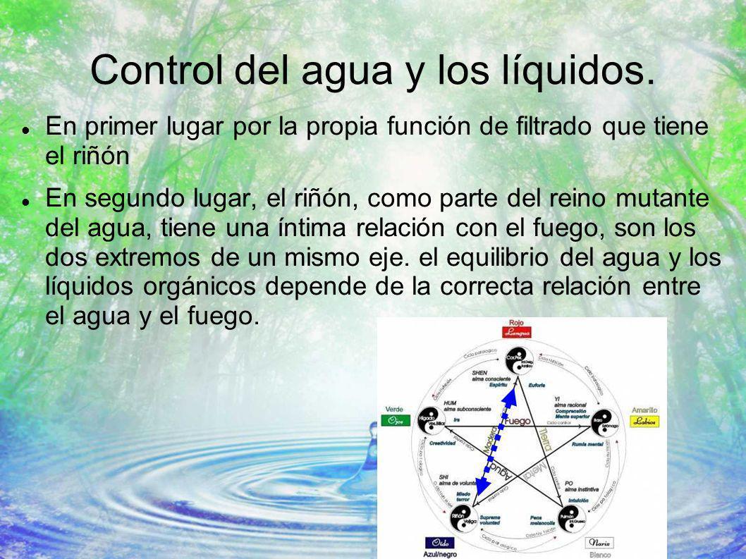 Control del agua y los líquidos.