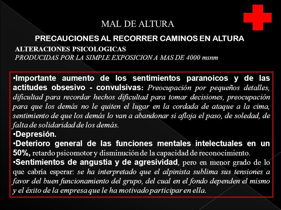 MAL DE ALTURA PRECAUCIONES AL RECORRER CAMINOS EN ALTURA