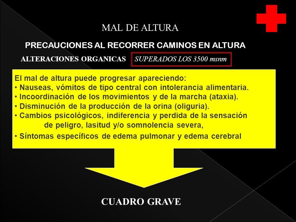 MAL DE ALTURA CUADRO GRAVE PRECAUCIONES AL RECORRER CAMINOS EN ALTURA