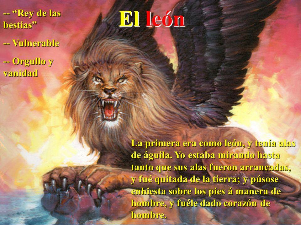 El león -- Rey de las bestias -- Vulnerable -- Orgullo y vanidad