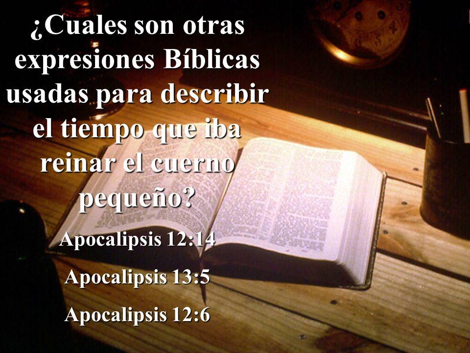 ¿Cuales son otras expresiones Bíblicas usadas para describir el tiempo que iba reinar el cuerno pequeño
