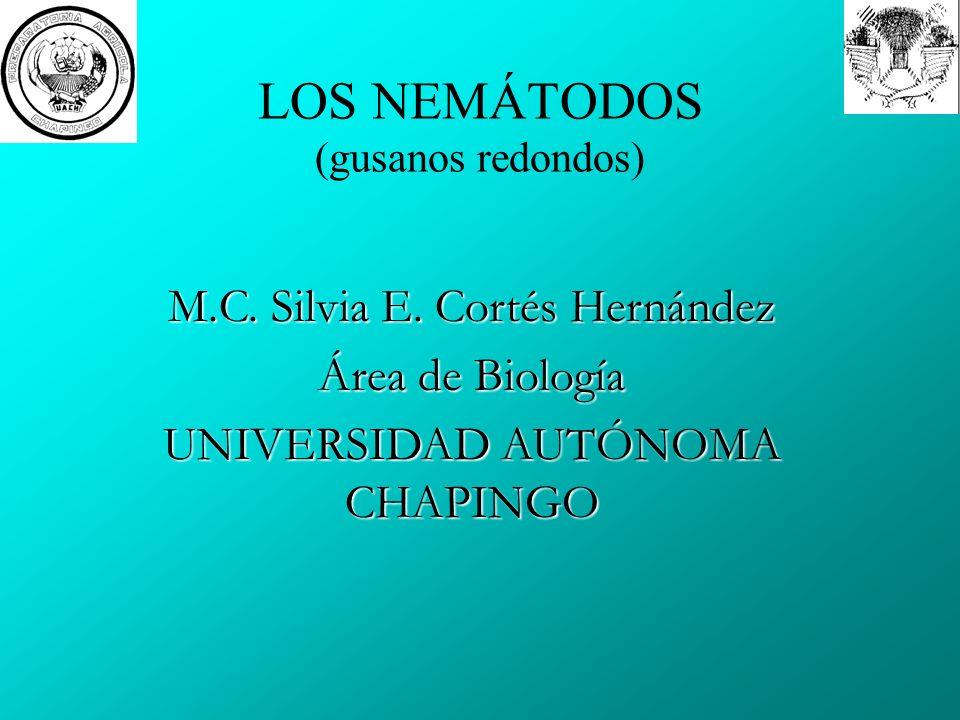 LOS NEMÁTODOS (gusanos redondos)
