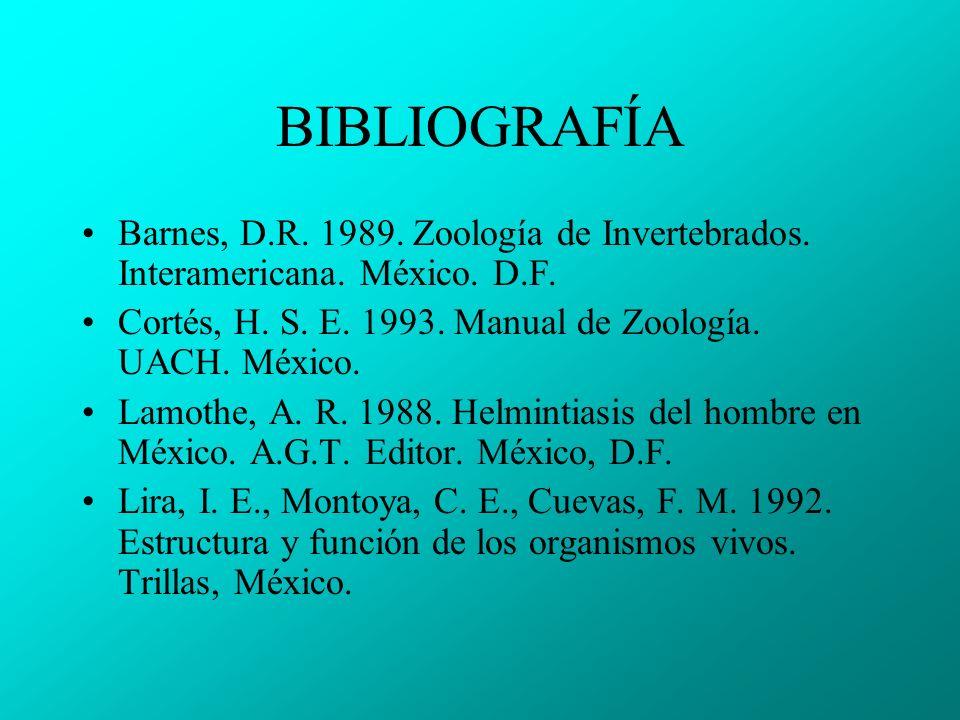 BIBLIOGRAFÍA Barnes, D.R. 1989. Zoología de Invertebrados. Interamericana. México. D.F. Cortés, H. S. E. 1993. Manual de Zoología. UACH. México.