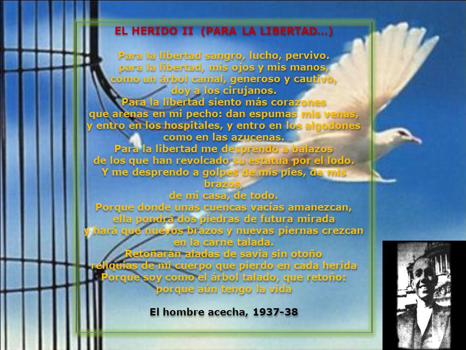 EL HERIDO II (PARA LA LIBERTAD…)