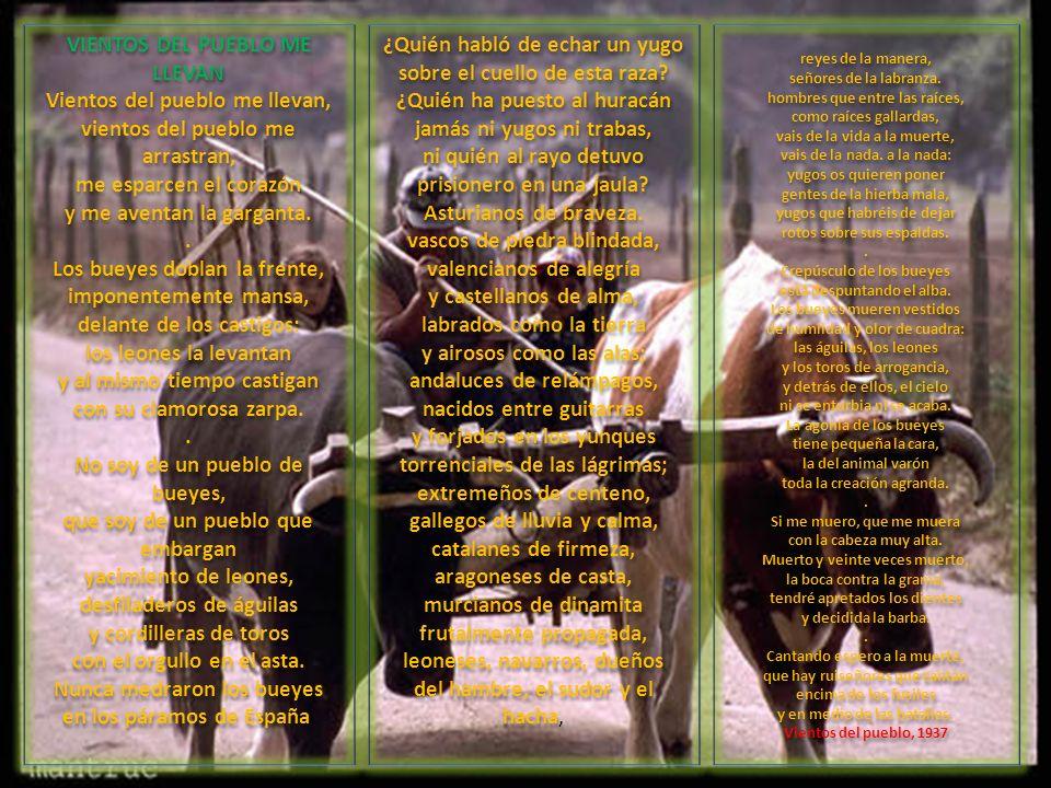 VIENTOS DEL PUEBLO ME LLEVAN Vientos del pueblo me llevan, vientos del pueblo me arrastran, me esparcen el corazón y me aventan la garganta. . Los bueyes doblan la frente, imponentemente mansa, delante de los castigos: los leones la levantan y al mismo tiempo castigan con su clamorosa zarpa. . No soy de un pueblo de bueyes, que soy de un pueblo que embargan yacimiento de leones, desfiladeros de águilas y cordilleras de toros con el orgullo en el asta. Nunca medraron los bueyes en los páramos de España.